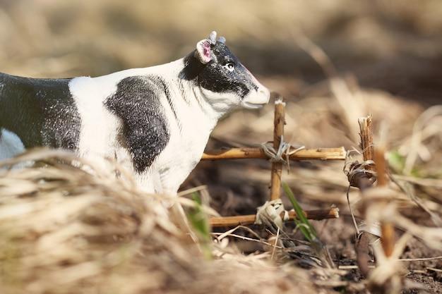 Spielzeugkuh fotografiert auf der straße mit einem zaun aus ästen auf dem boden im gras