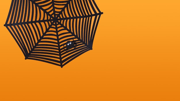 Spinnenspinnennetz mit kleiner spinnenform