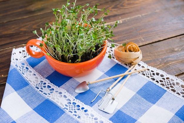 Sprossen von mini-grün in orangefarbener tasse und biologisch abbaubarer gabel und messer aus bambus aus wiederverwendbarem material aus natürlichem öko-recycling
