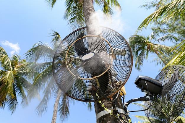 Sprühdampf des nebelgebläses auf kokosnussbaum