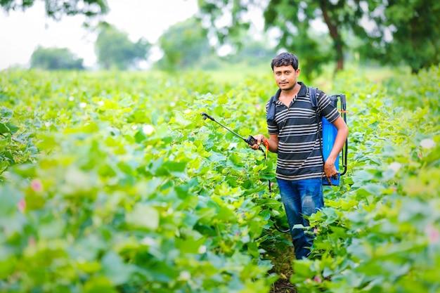Sprühpestizid des indischen landwirts am baumwollfeld