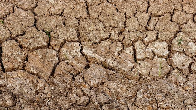 Sprungsbodenbeschaffenheit im sommer. vom globalen klima