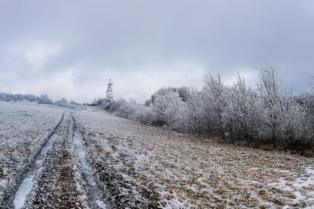 Spur durch ein schneebedecktes feld.