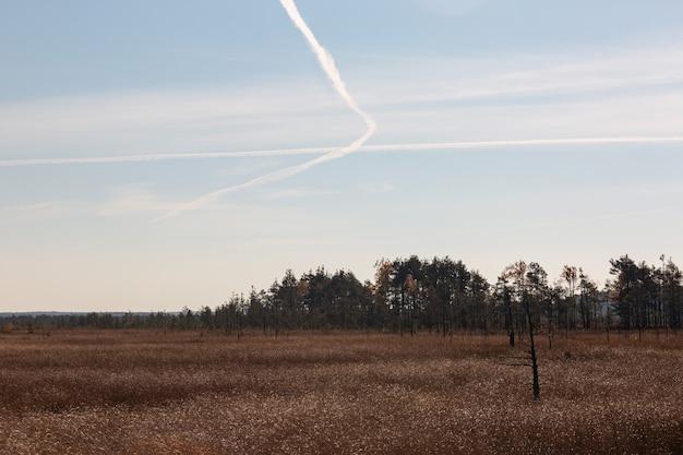 Spuren der flugzeuge am himmel über dem sumpf im frühherbst