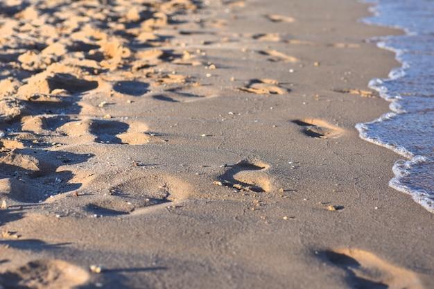 Spuren entlang der küste an einem sonnigen abend