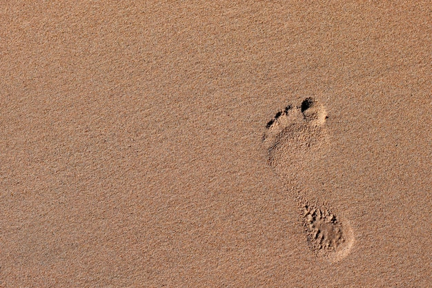 Spuren im sand am strand