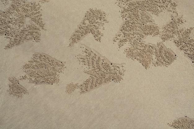 Spuren von krabben auf gelbem sand. ein hintergrund über ruhe und reisen