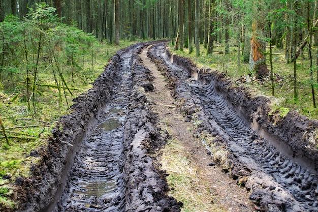 Spuren von traktor- oder bulldozerreifen im großen schlamm. großer autoreifendruck auf dem boden. abdruck von radspuren. abholzung und abholzung, waldrodung, holzentnahme.