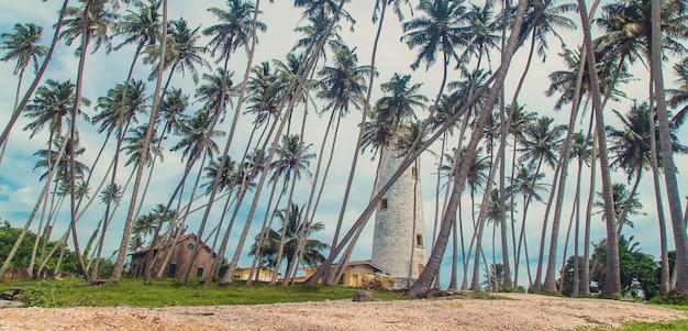 Sri lanka ist eine insel mit einem leuchtturm