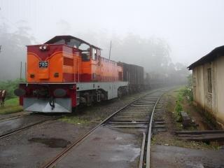 Sri lanka-szene im landesinneren, orange