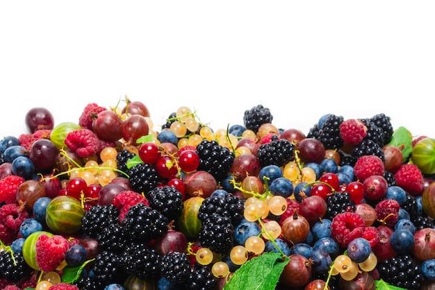 Stachelbeeren, blaubeeren, maulbeere, himbeeren, weiße und rote johannisbeeren lokalisiert auf weißem hintergrund.