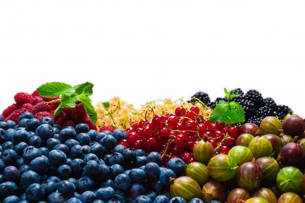 Stachelbeeren, blaubeeren, maulbeeren, himbeeren, weiße und rote johannisbeeren isoliert