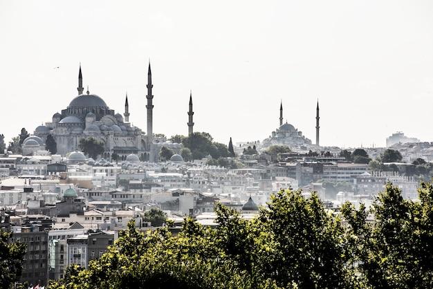 Stadtbild von istanbul mit hagia sophia und blauer moschee