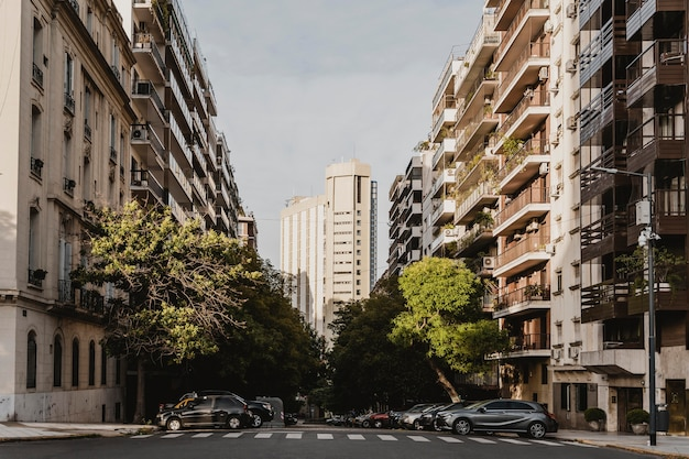 Stadtstraße mit betongebäuden und bäumen