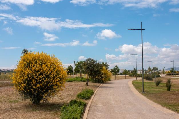 Städtischer park in der stadt faro