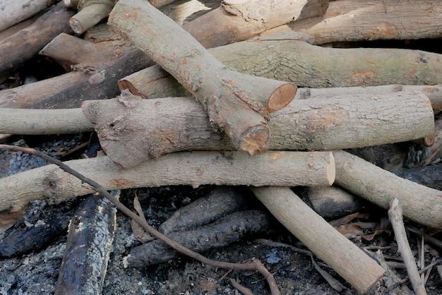 Stämme und zweige für brennholz