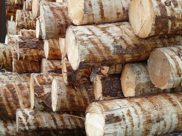 Stämme woodworks holz holzstapel baum