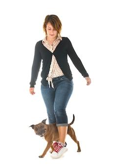 Staffordshire bull terrier und frau