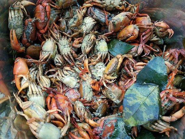 Stapel der gekochten gesalzenen krabbe, für thailändisches lebensmittel som tum