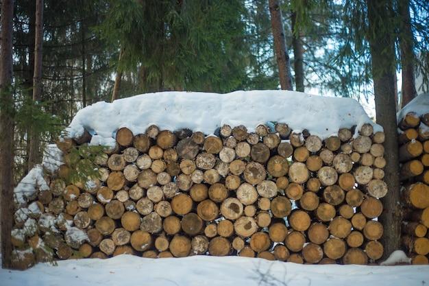 Stapel holzstämme bereit für den winter
