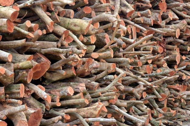 Stapel schnittholzklotz, zum als brennholz zu dienen