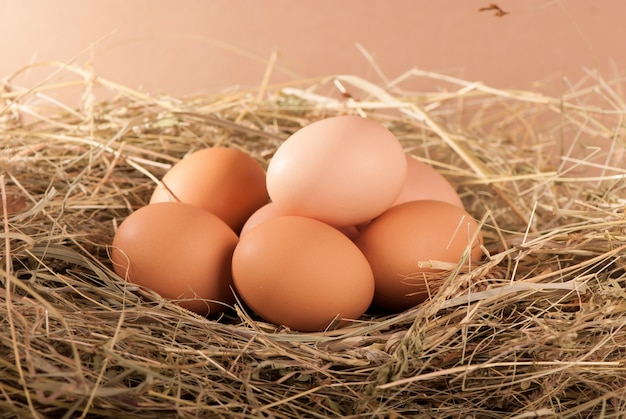 Stapel von braunen hühnereiern in einem nest