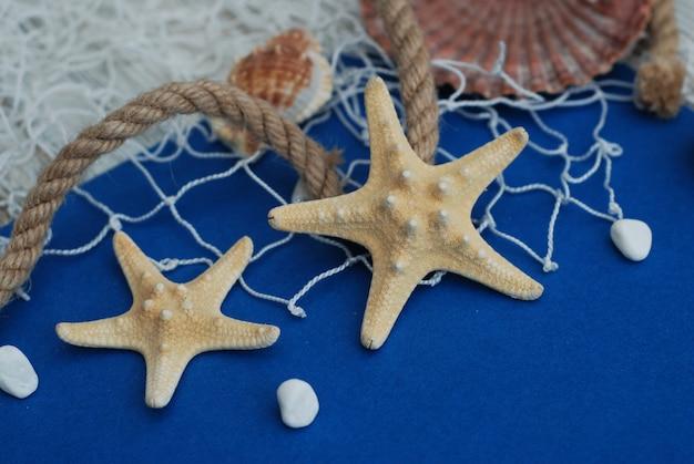Starfish, oberteile, stein und netz auf blauem hintergrund, kopienraum. sommerferien.