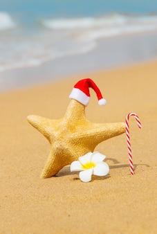 Starfish santa claus am strand mit zuckerstange und blume