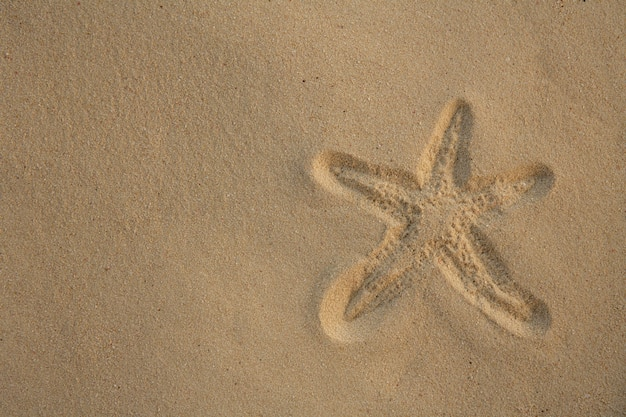 Starfishabdruck über karibischem sand