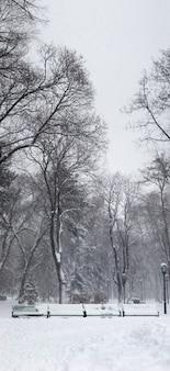 Starker schneesturm im park. vertikales panorama aus 5 bildern.