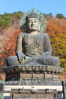 Statue von buddha im seoraksan nationalpark