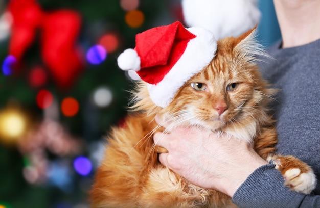 Stehender mann, der eine flauschige rote katze auf weihnachtshintergrund hält