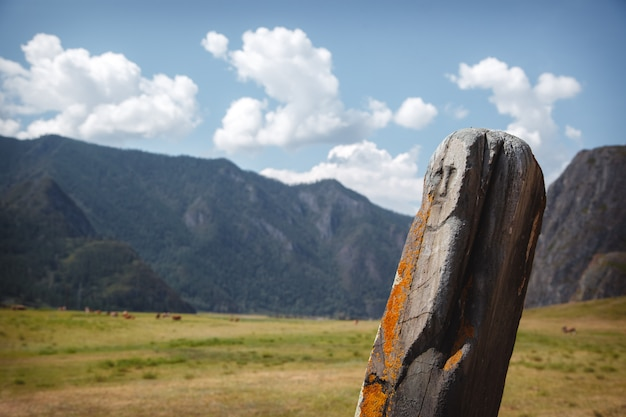 Stein mit einer neolithischen petroglyphe, die das gesicht einer frau darstellt