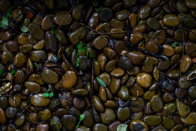 Stein nasse textur hintergrund