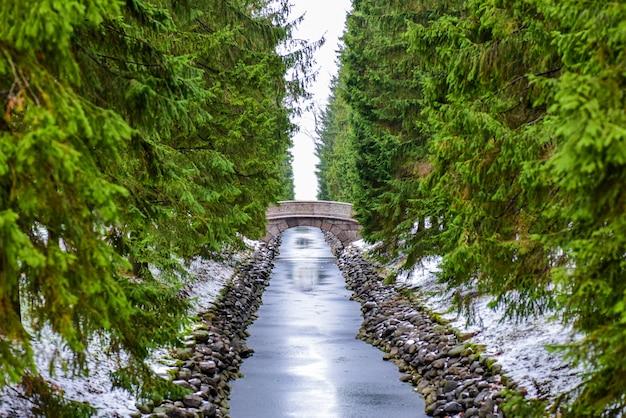 Steinbrücke über den fluss im winterwald