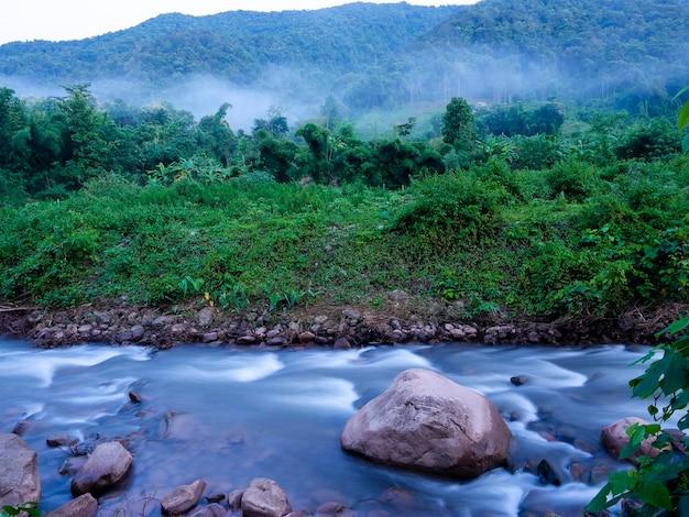 Steine in weichem fließendem wasserfluss am grünen waldberg mit nebel, naturlandschaft, mang-fluss im sapan-dorfreiseziel in nan, thailand