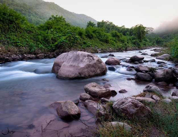 Steine in weichem fließendem wasserfluss in frischem grünem waldberg mit nebel, naturlandschaft, mang-fluss im sapan-dorfreiseziel in nan, thailand