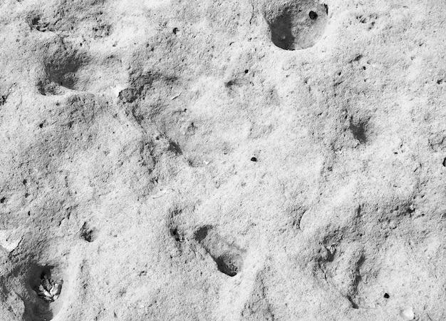 Steingrauer texturhintergrund
