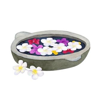Steinschale zur waschung mit blumen. schüssel für spa mit frangipani oder plumeria. hand gezeichnete aquarellillustration. isoliert.