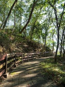Steinstufen in den bergen in taiwan.