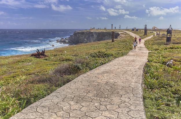 Steinweg durchquert einen grünen garten mit dem hintergrund des meeres: das panorama auf isla mujeres in mexiko