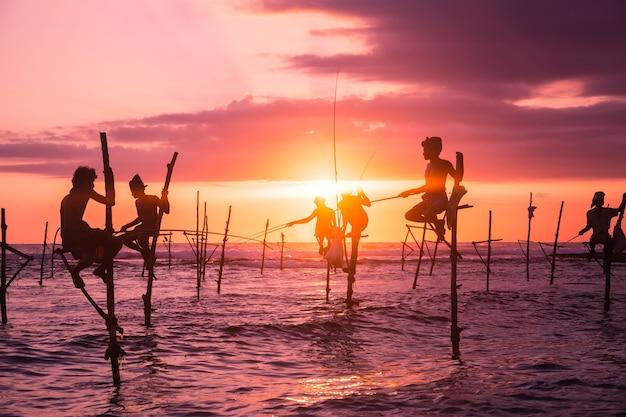 Stelzenfischerei in sri lanka ein einzigartiger angelstil an der südlichen küste