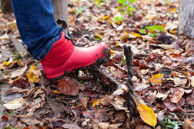 Stiefel auf einem schuhkratzer rosa wasserdichte stiefel werden auf einem englischen traditio...