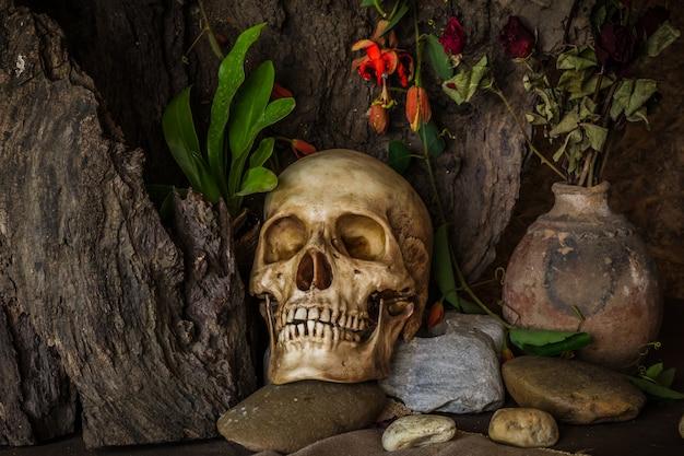 Stillleben mit einem menschlichen schädel mit wüstenpflanzen, kaktus, rosen und getrockneten blumen.
