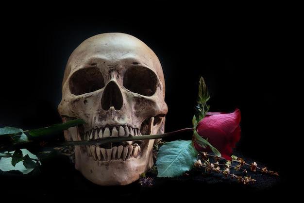 Stillleben mit menschlichem schädel mit roter rose und telefon auf schwarzem boden