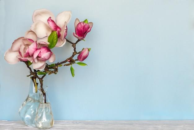 Stillleben mit schönen frühlingsmagnolienblumen in der vase auf blauem copyspace. naturkonzept