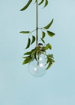 Stillleben nachhaltigkeitskonzept anordnung
