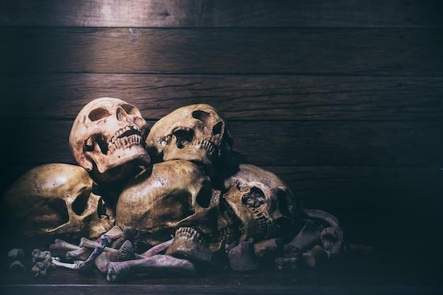 Stilllebenphotographie mit den menschlichen schädeln