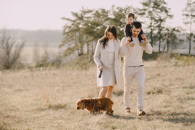 Stilvolle familie, die auf einem sonnigen feld geht
