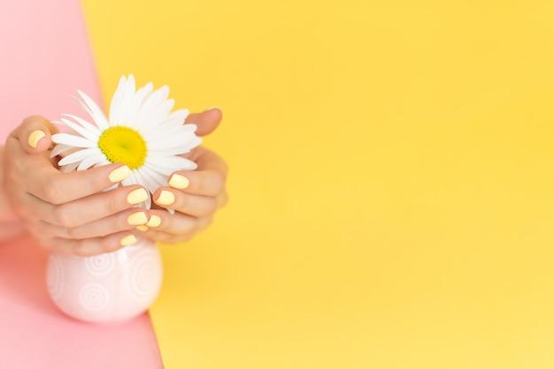 Stilvolle modische weibliche maniküre. gänseblümchenblume in der hand mit einer schönen maniküre.